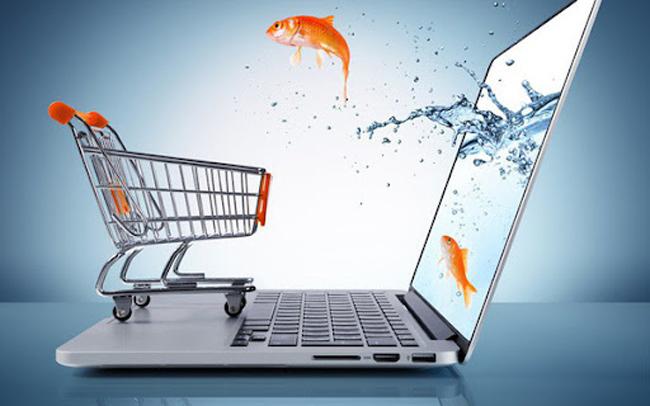 Cá nhân có được thành lập website thương mại điện tử?