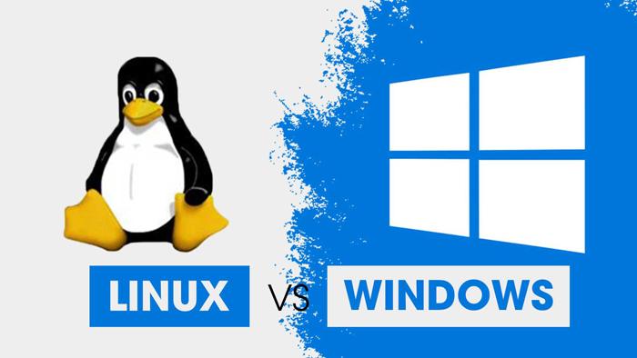 Hosting Linux và Hosting Windows