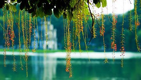 Thiết kế web quận Hoàn Kiếm