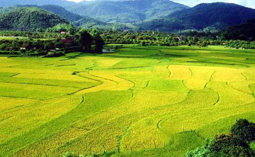 Thiết kế web tại Bắc Giang